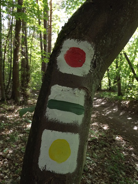 Hiking Trails, Signpost, Mark, Waymarks, Forest, Nature