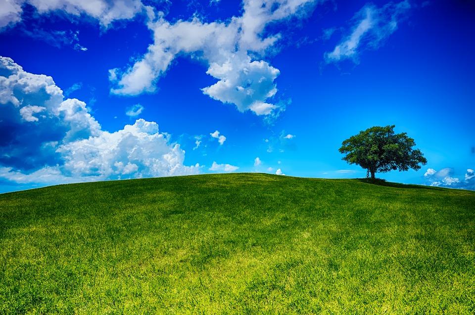 Hill, Tree, Landscape, Nature, Sky, Blue, Cloud, Scenic