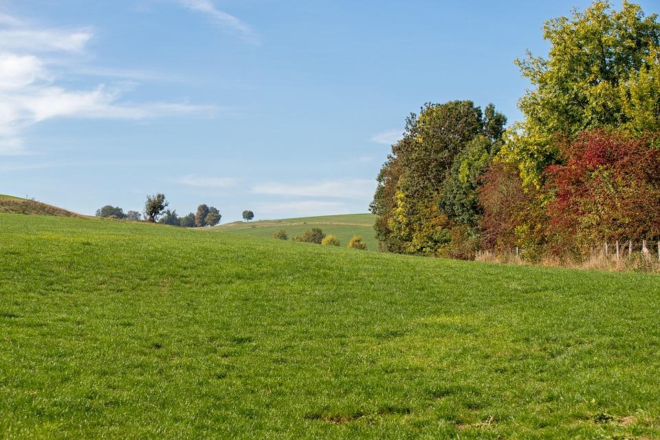Nature, Landscape, Autumn, Hills, Limburg, Simpelveld