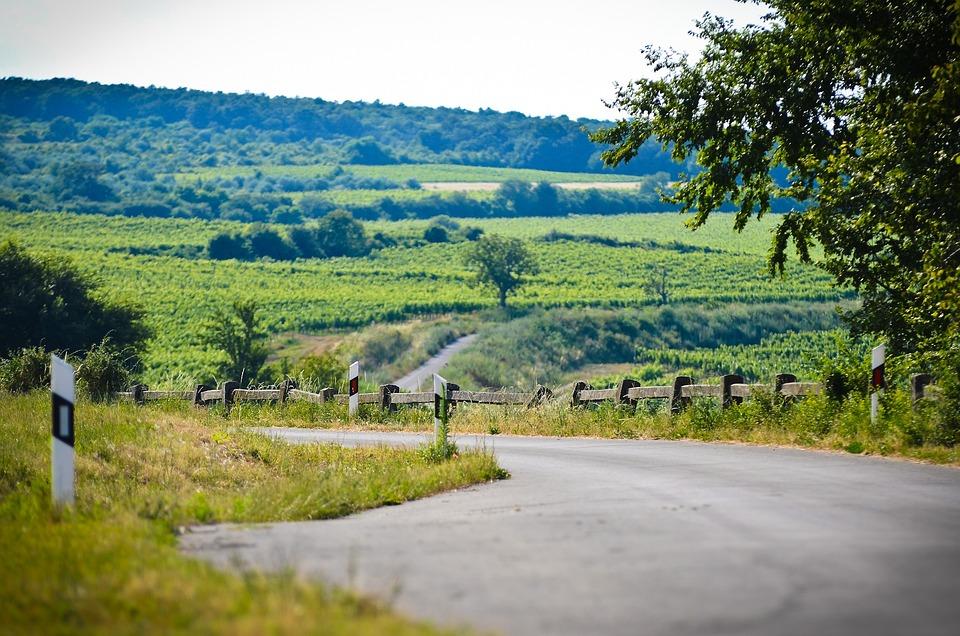 Landscape, Hungary, Nature, Green, Sky, Trees