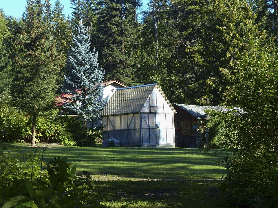 Green House, Garden, Nature, Trees, Idyll, Beautiful