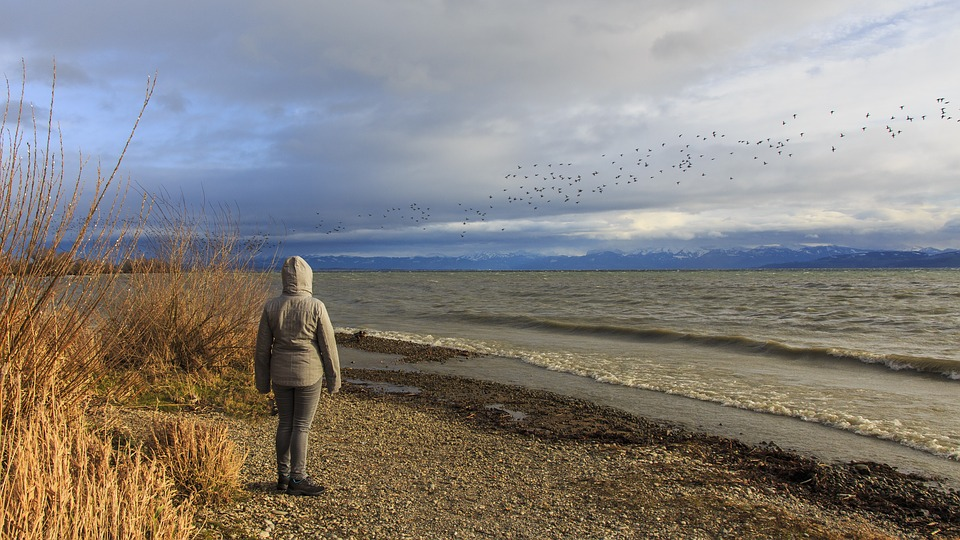 Stormy, Winter, Lake Constance, Immenstaad, Nature, Sky