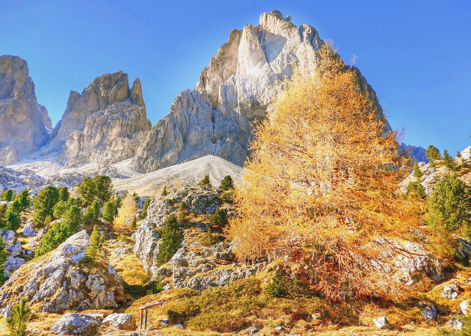 Indian Summer, Dolomites, Autumn, Alm, Nature