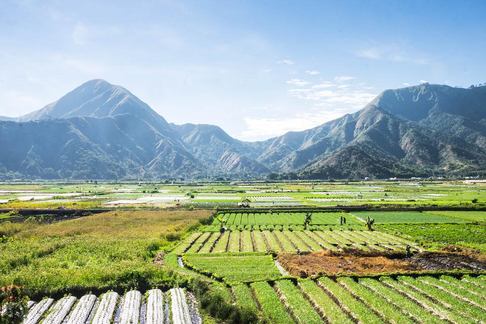 Landscape, Lombok, Rinjani, Indonesia, Nature, Travel
