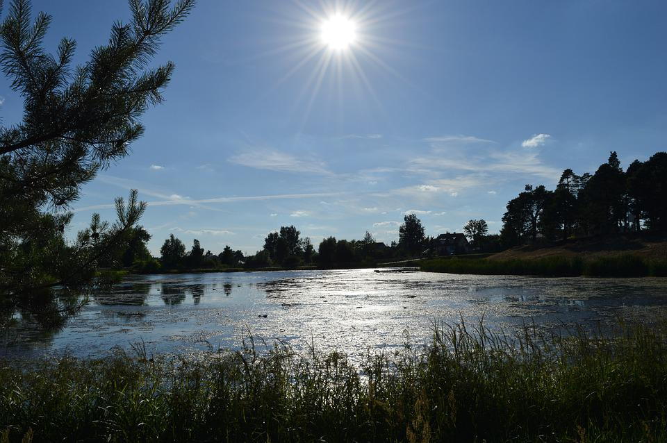 Józefów, Mite, Lagoon, Lake, Nepryszka, Nature