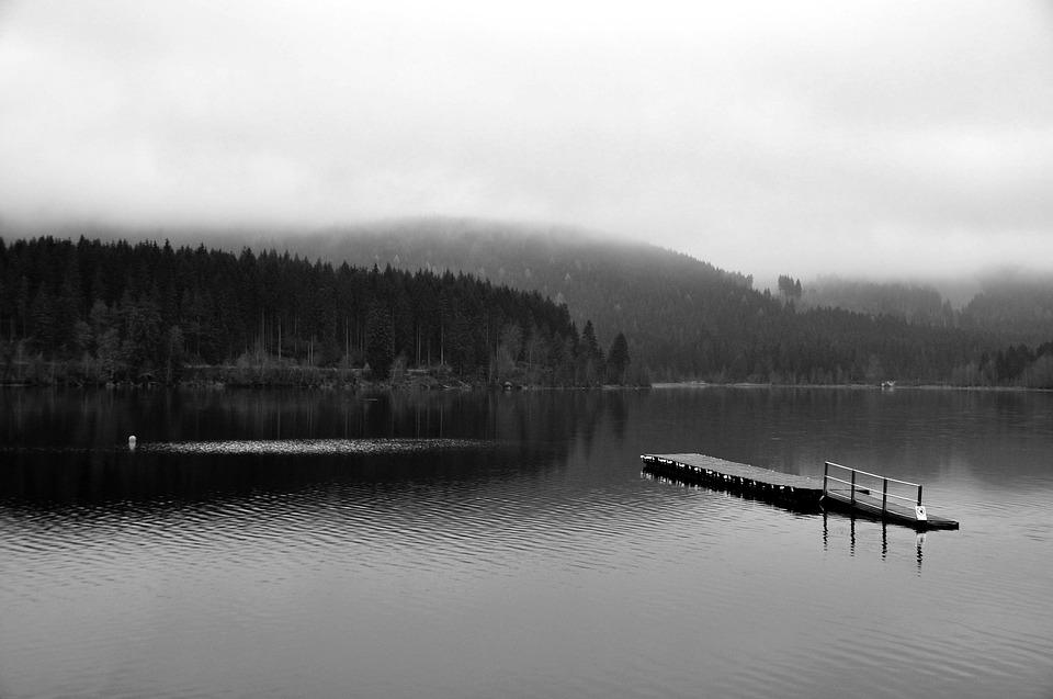 Lake, Fog, Nature, Landscape, Mood, Web