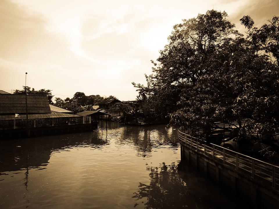 Bangkok, Thailand, House, Landscape, Old, Tree, Nature