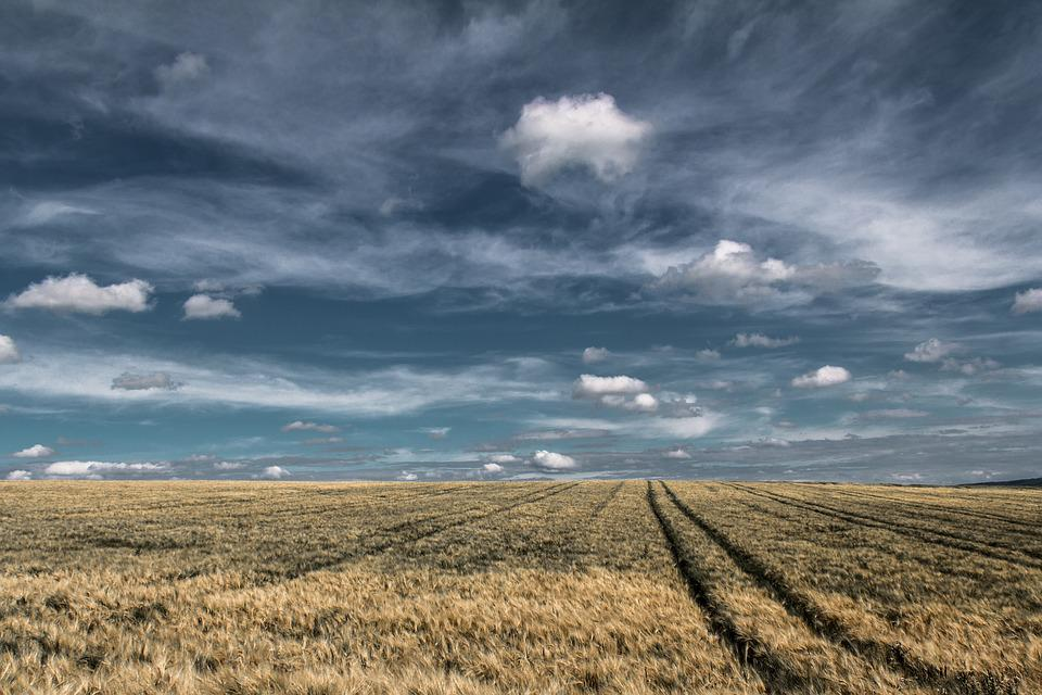 Clouds, Field, Landscape, Nature