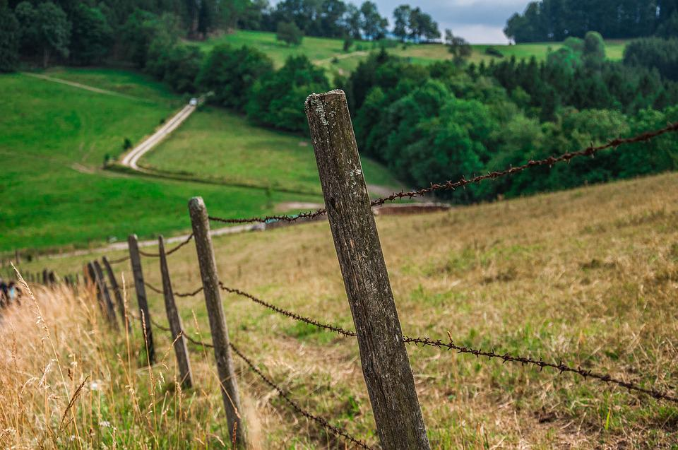 Path, Fence, Field, Nature, Landscape, Hill, Tilt