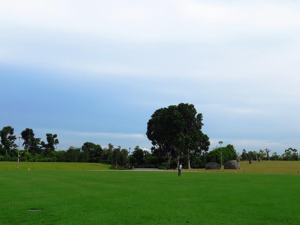 Landscape, Background, Green, Nature