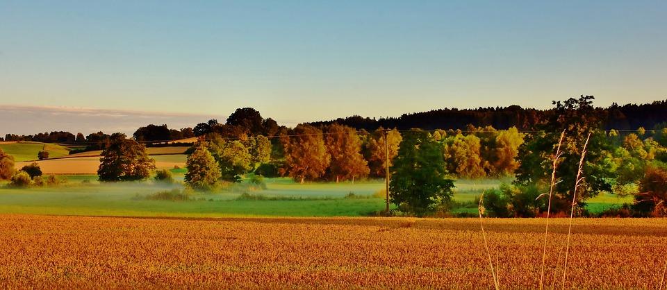 Landscape, Morning, Fog, Ground Fog, Sunrise, Nature