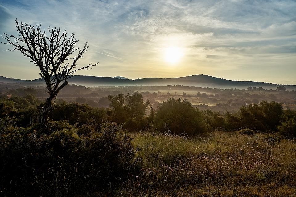 Mallorca, Nature, Sunrise, Landscape, Mood, Island