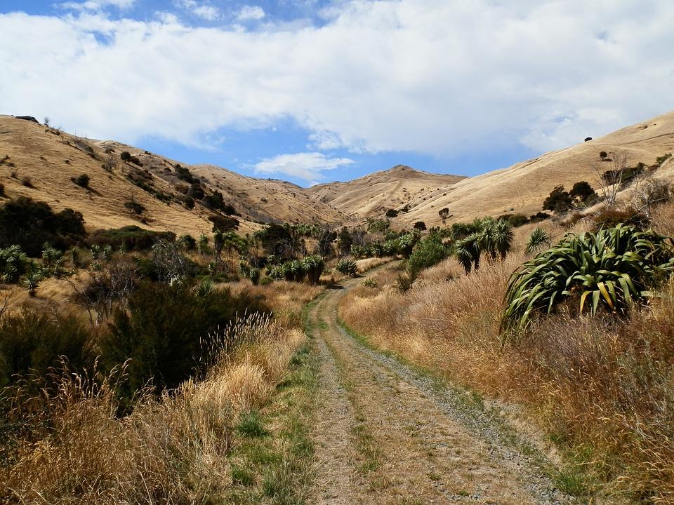 Holiday, Landscape, Nature, New Zealand