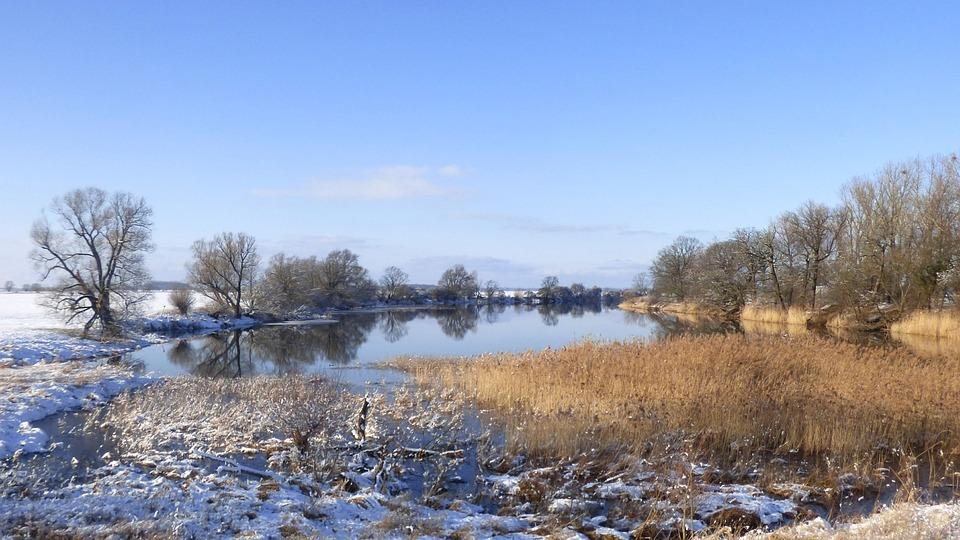 Nature, Waters, Winter, Tree, Landscape, Lake