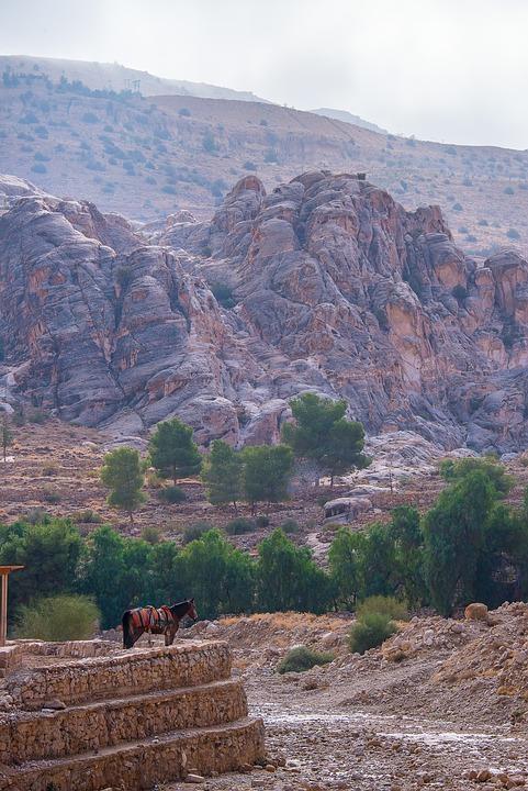 Jordan, Petra, Horse, Landscapes, Nature