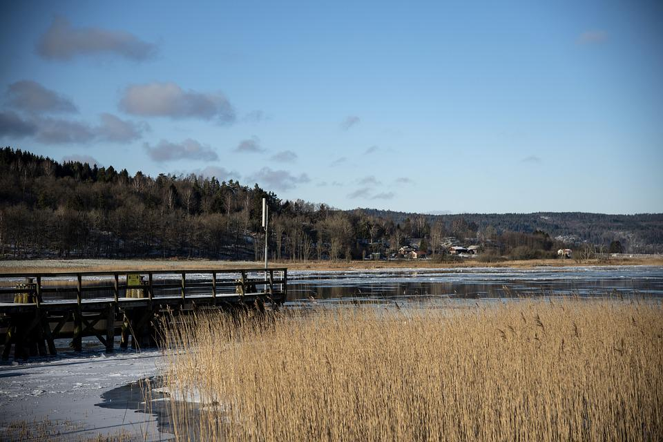 Water Courses, Water, Nature, Landscapes, Forest, Ice