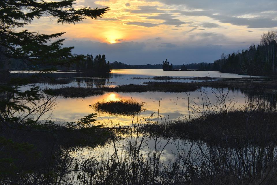Sunset, Nature, Marsh, Sun, Evening, Landscape