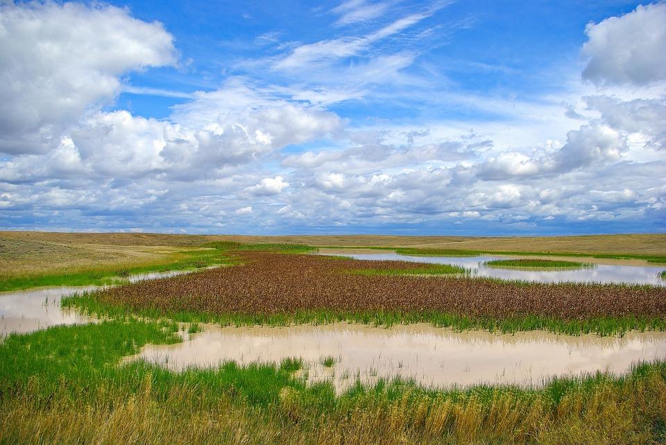 Buffalo Gap, Marsh, Wetland, Sky, Nature, Water
