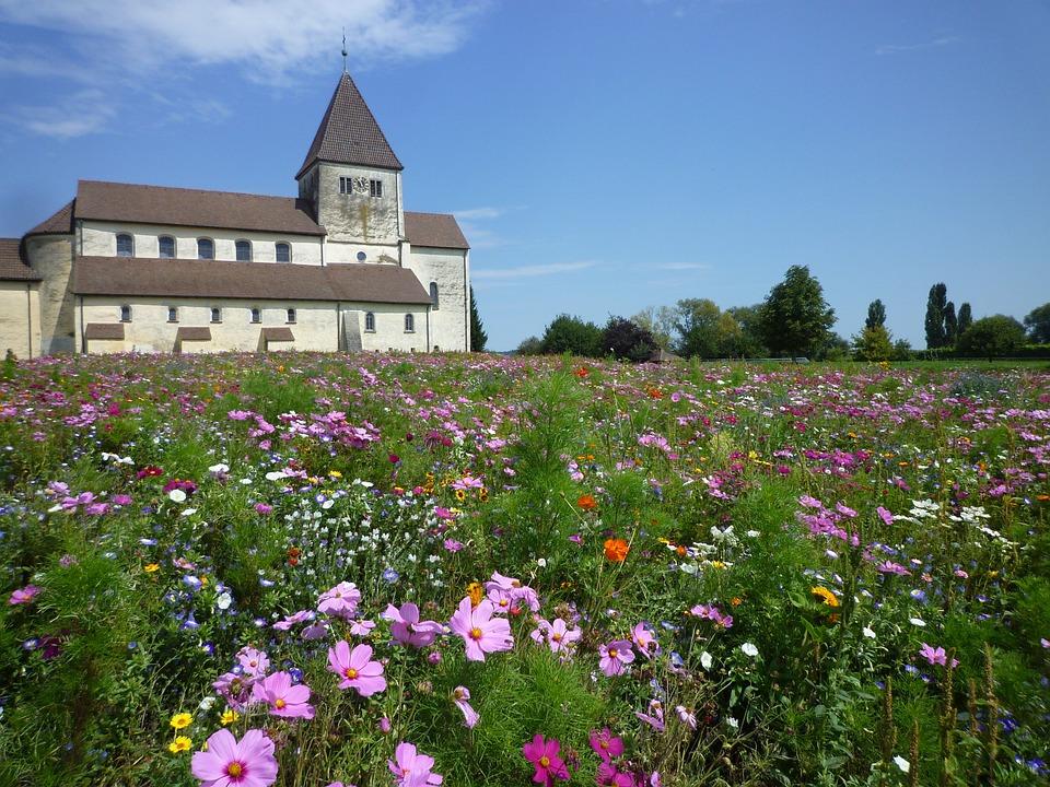 Church, Monastery, Nature, Flowers, Meadow, Bloom