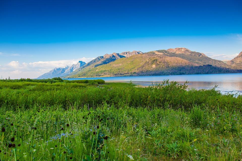 Nature, Landscape, Mountains, Clouds, Grass, Flowers