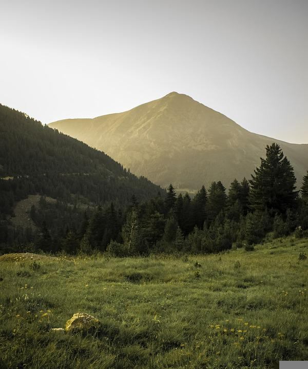 Mountains, Forest, Landscape, Trees, Field, Nature