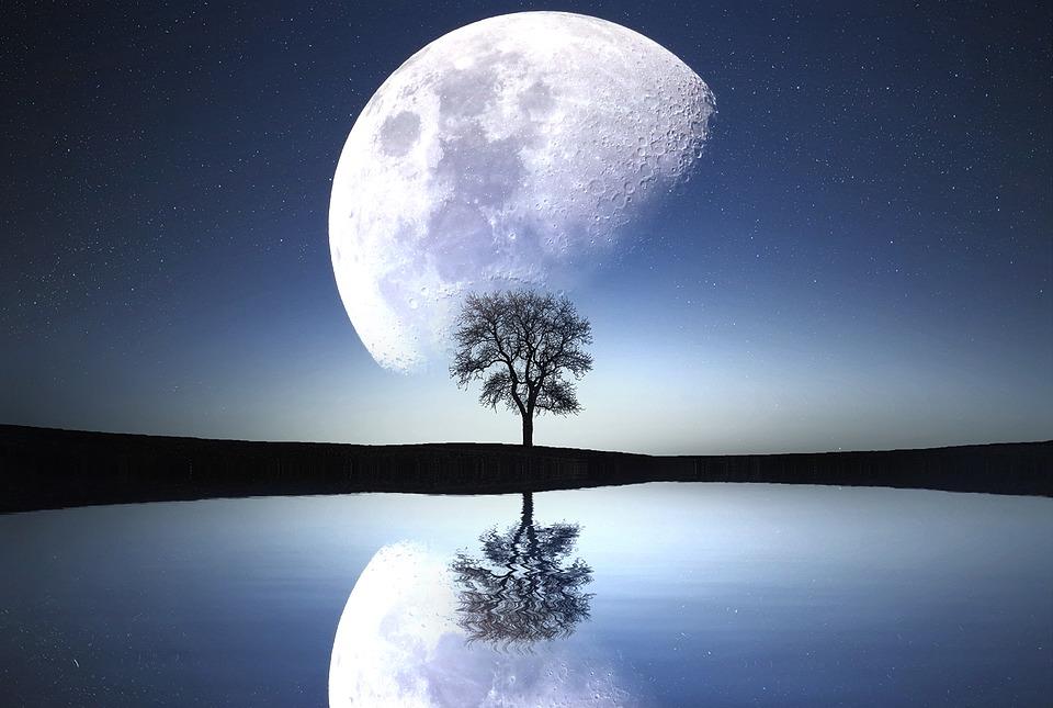 Moon, Night, Lake, River, Sky, Nature, Landscape