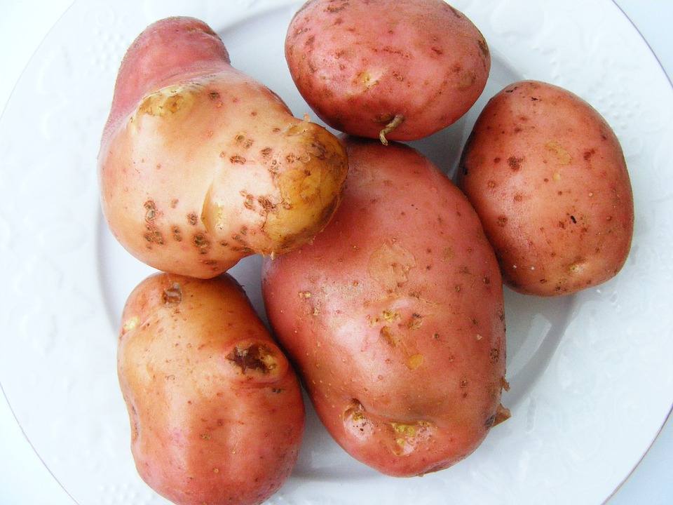 Potatoes, Nature, Vegetable, Fresh, Organic, Healthy