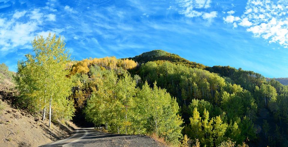 Autumn, Season, Nature, Beautiful, Outdoor, Landscape