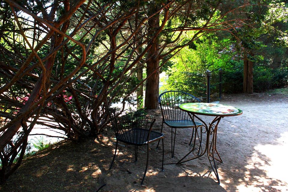Landscape, Break, Table, Wood, Nature, Outdoor, Cafe