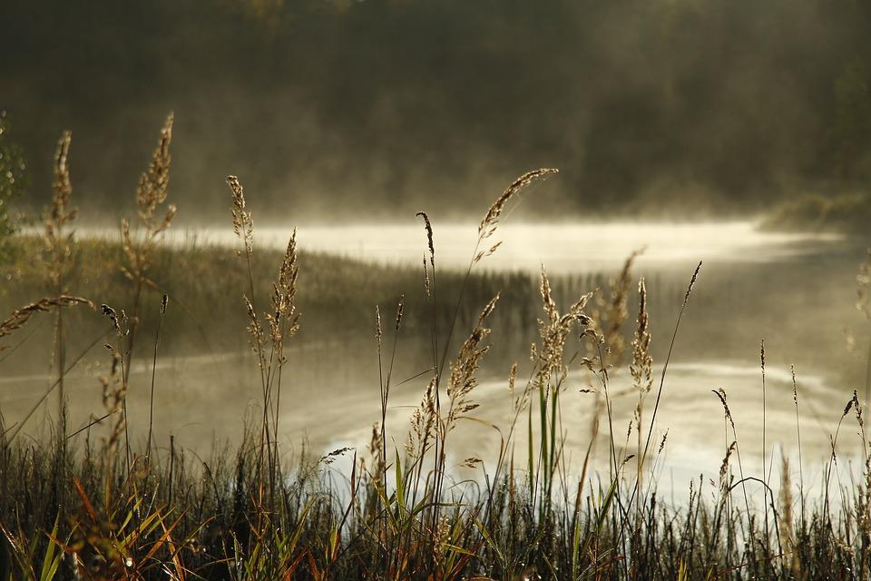 Nature, Autunumn, Water, Lake, Landscape, Outdoors