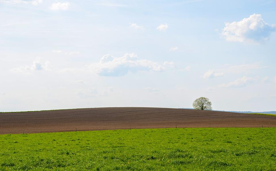 Landscape, Panorama, Field, Nature, Agriculture, Grass