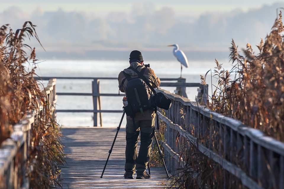 Photographer, Nature Photographer, Spring Lake, Egret