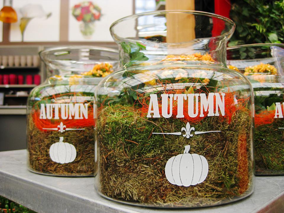 Fall, Garden, Nature, Jar, Jars, Pumpkin, Garden Centre