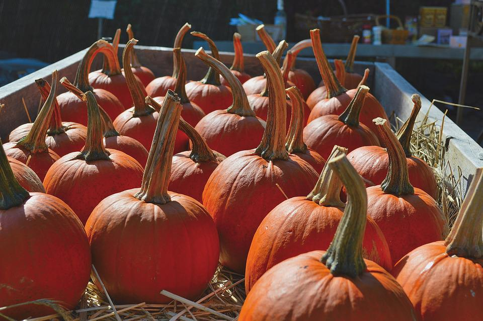 Pumpkins, Nature, Fall, Cart