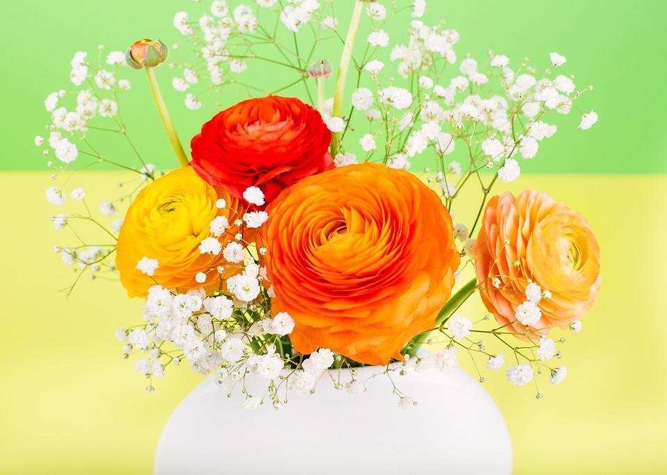 Flower, Ranunculus, Orange, Flower Vase, Nature, Bright