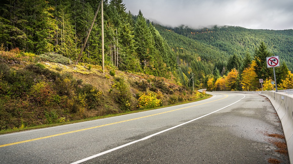Road, Highway, Fall, Autumn, Forest, Nature, Landscape