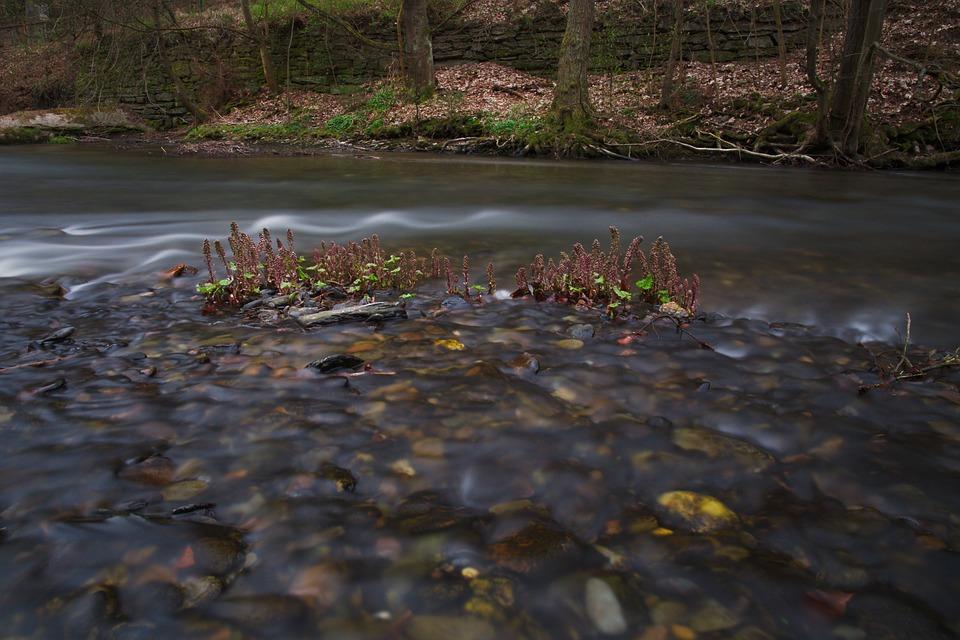 Waters, Nature, River, Autumn, Landscape, Leaf, Rock