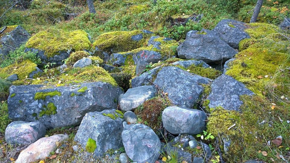 Nature, Landscape, Rock, Nature Photo, Stone, Moss