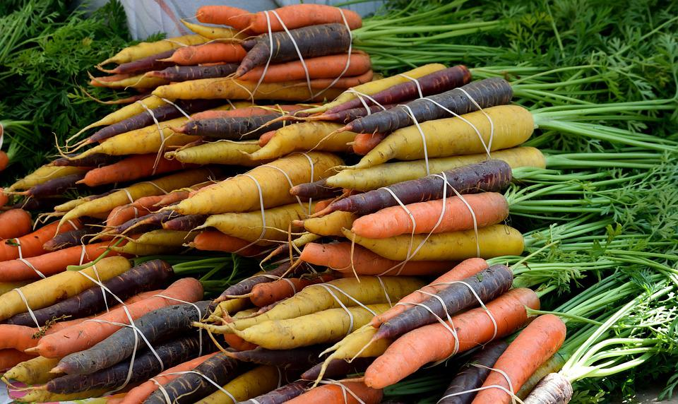 Vegetable, Food, Carrot, Bunch, Market, Nature, Root