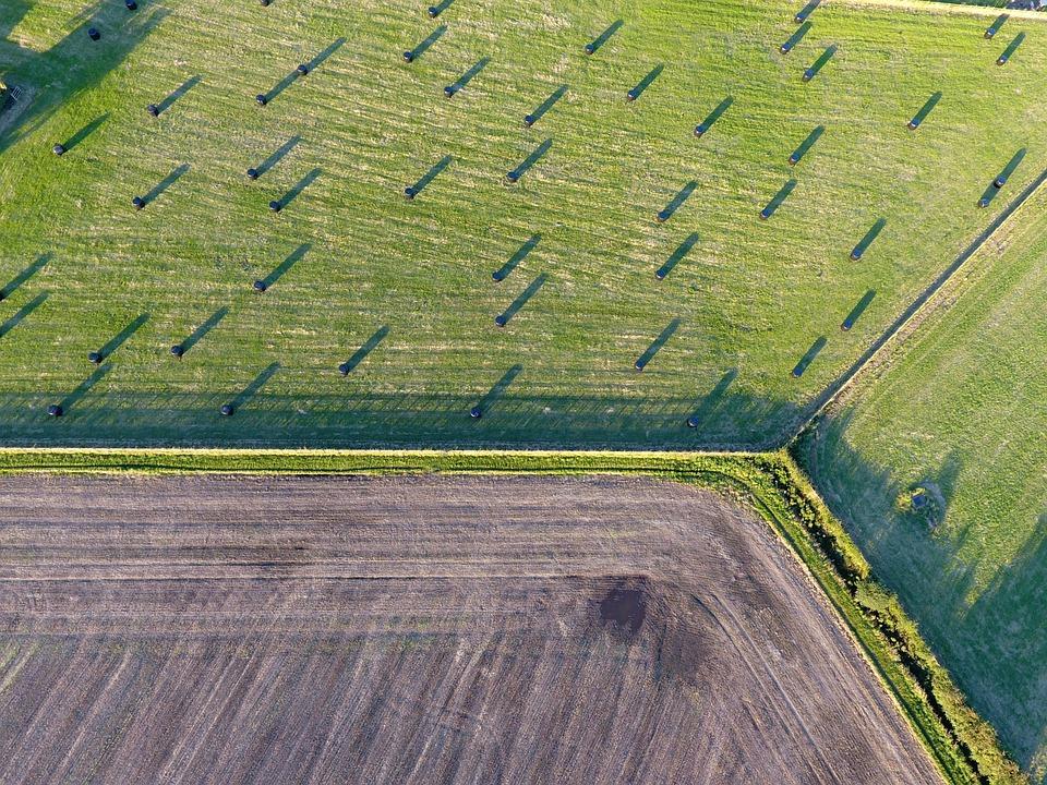 Field, Agriculture, Farming, Rural, Nature, Landscape