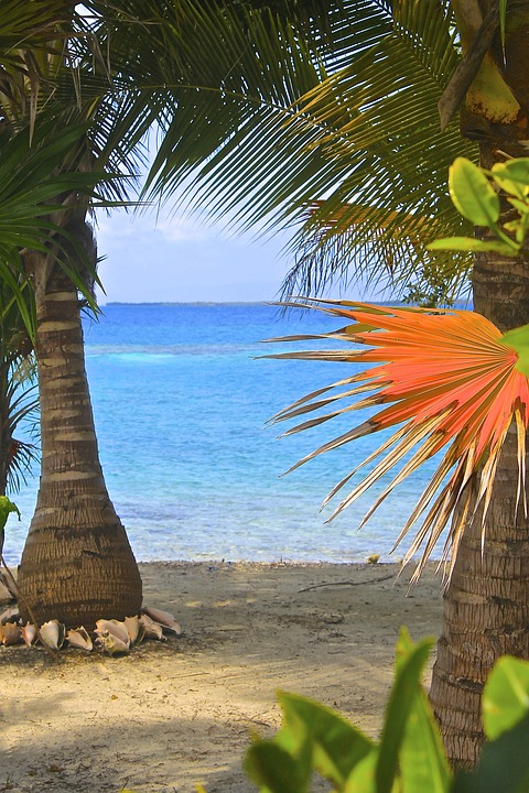 Belize, Nature, Scenic, Vacation