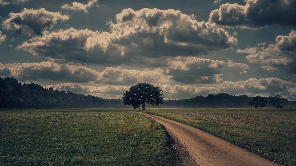 Away, Lane, Nature, Landscape, Sky, Field, Clouds, Tree