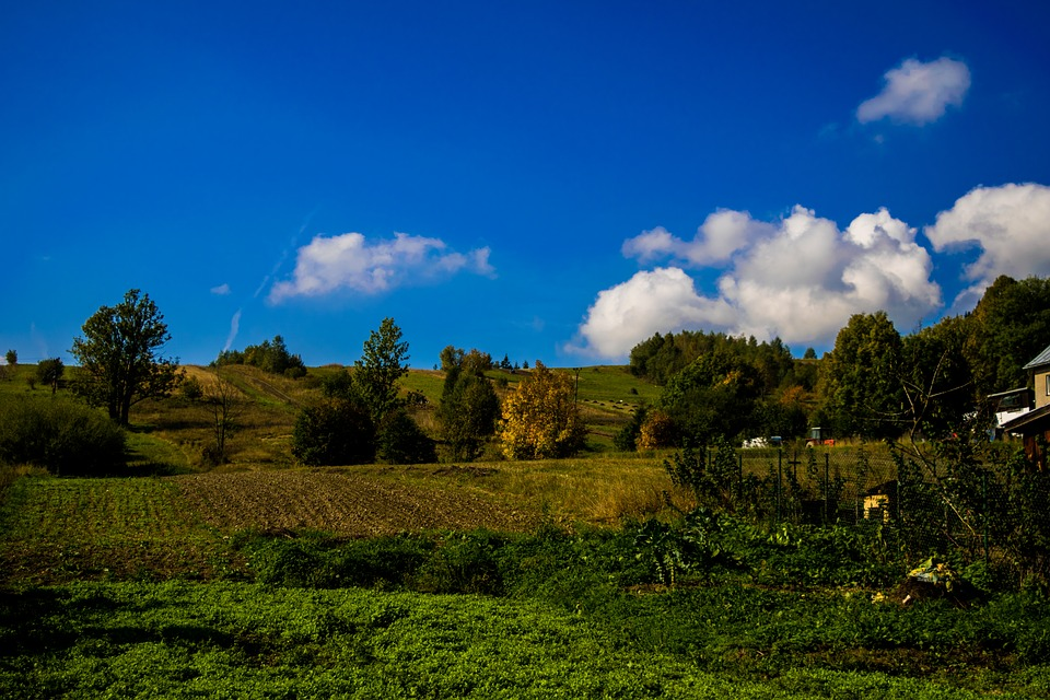 Nature, Clouds, Sky, Blue, Meadow