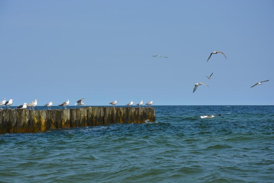 Sea, Sky, Nature
