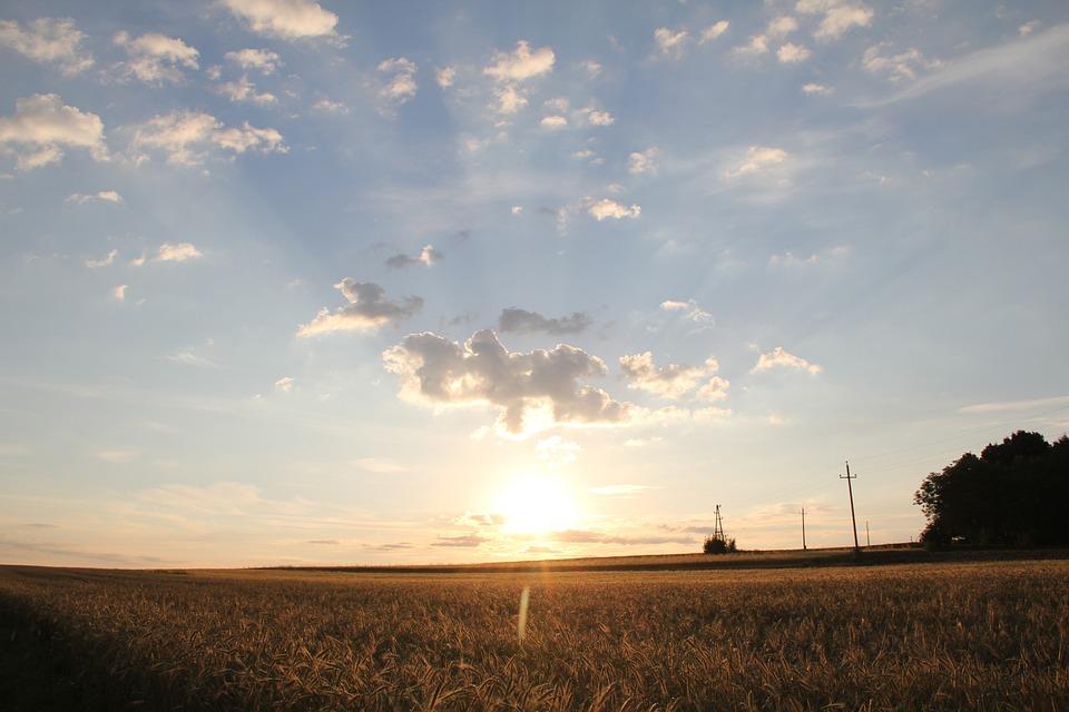 Sunrise, Fields, Sky, Clouds, Nature
