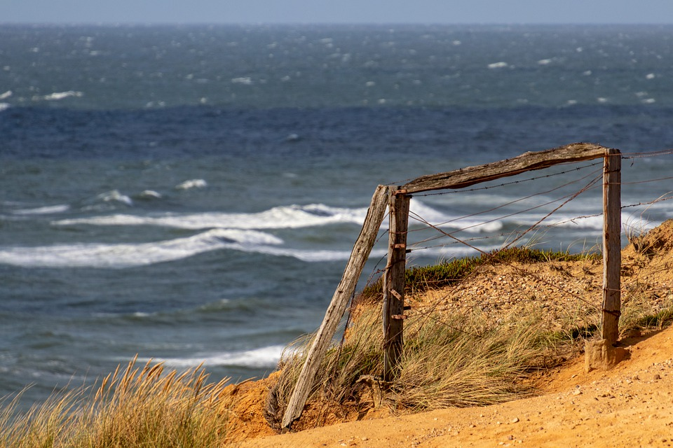 Sylt, Dunes, Wood, Fence, North Sea, Nature, Sea, Sky