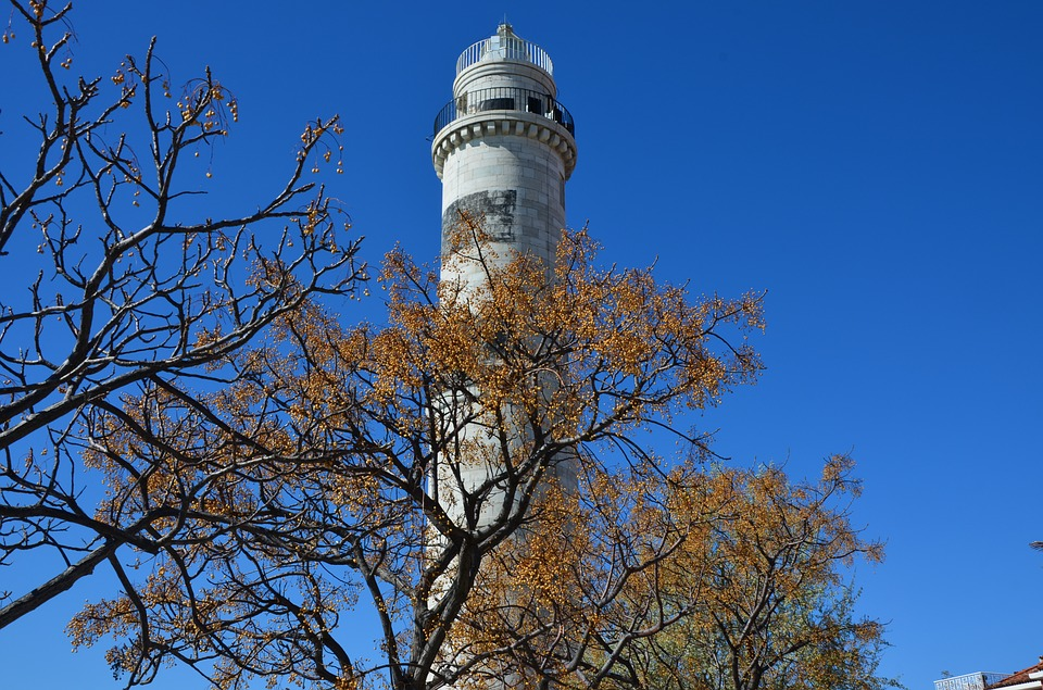 Tree, Sky, Outdoors, Fair Weather, Tower, Nature, Sunny