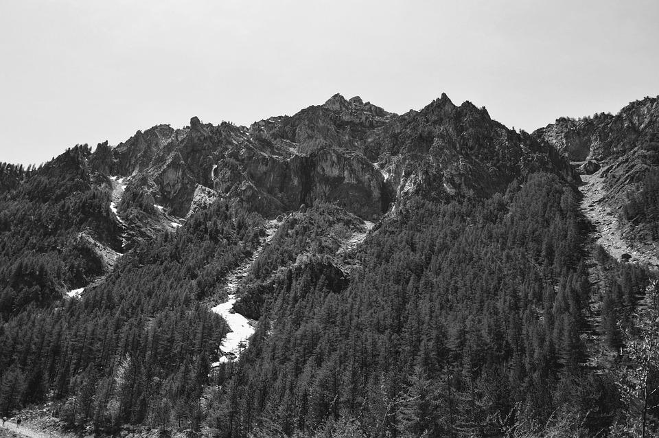 Mountain, White, Nero, Snow, Pini, Nature, Mountains
