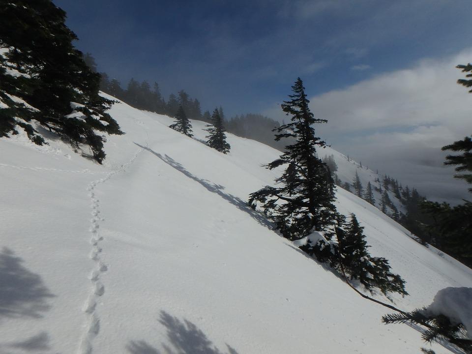 Snow, Mountain, Winter, Nature, Alpine, Scenery
