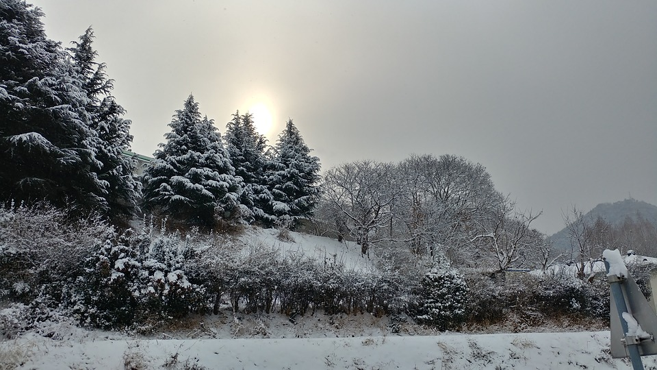 Snow, Sunrise, Landscape, Winter, Nature, Rural